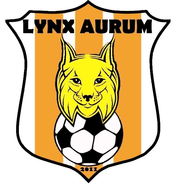 Kilingi-Nõmme Lynx Aurum (04)