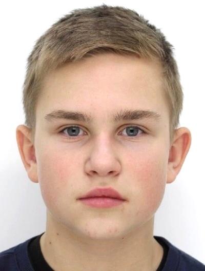Aleks Vitrikuš